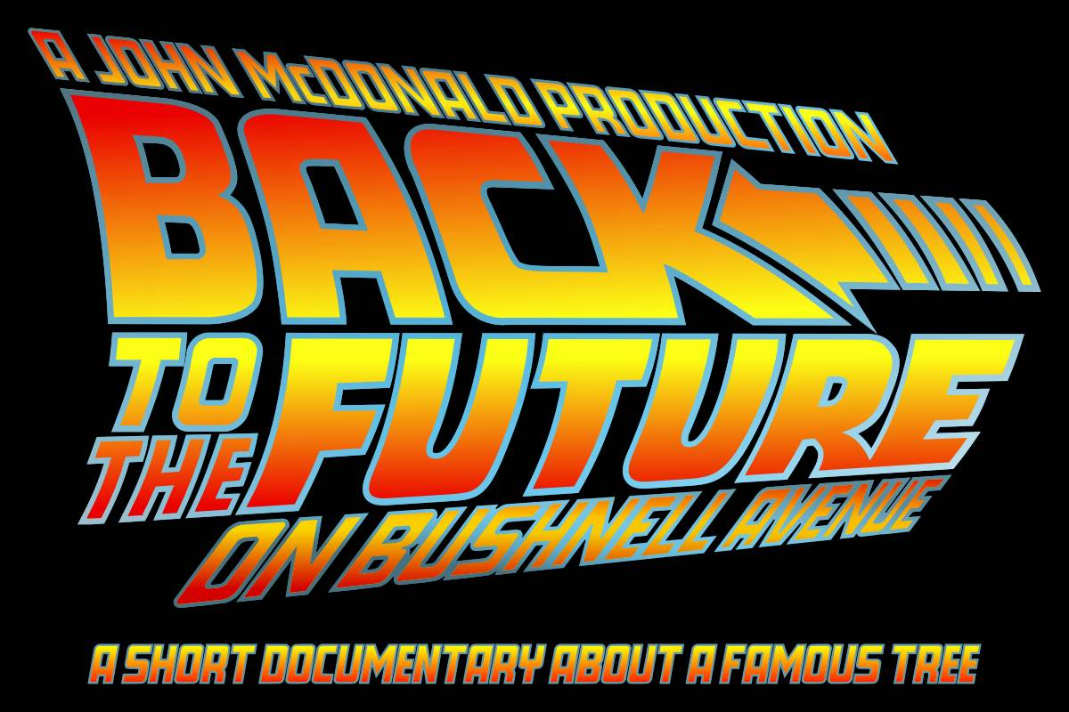 Back to the Future on Bushnell Avenue logo